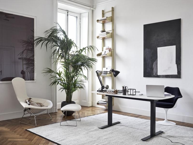 Knoll Grasshopper Height-Adjustable Desk